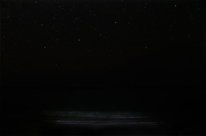 sea_stars_test